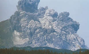 Mt ST Helens erupts on MAy 18 1980. An earthquake triggers a giant lanslide which releases the pressure on the lava within causing a enormous lateral blast of hot rocks and ash
