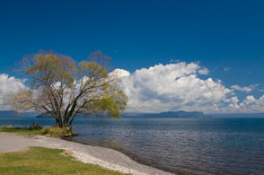 Lake Taupo was formed after a supervolcano eruption formed a volcanic  caldera  after an enormous volcanic eruption. The volcano lies beneath the waters of Lake Taupo.